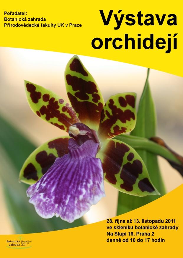 bz-uk.cz-sites-default-files-orchideje_web.jpg